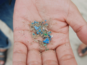 Pieces of microplastic in a person's palm