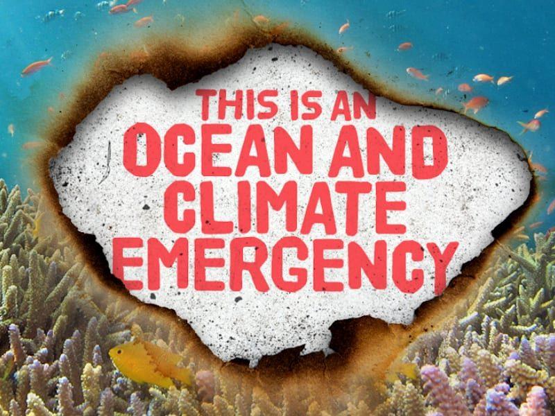 SAS-climate-emergency